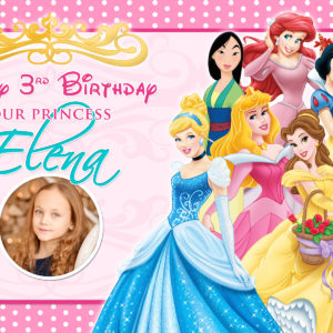 Free Disney Princesses Birthday Tarp Preview
