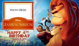 Free Lion King Birthday Tarp